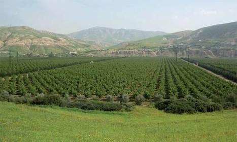 La BERD prévoit 120 millions d'euros pour le méga projet hydro-agricole de la plaine du Saïss | Le Matin | FTN Mediterranean Agriculture & Fisheries | Scoop.it