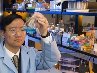 Researchers discover way to produce hydrogen fuel from any plant | Five Regions of the Future | Scoop.it