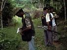 Amazon Rain Forest, Deforestation, Forest Conservation - National Geographic Magazine | Deforestation In The Amazon Rainforest | Scoop.it