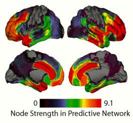 """Aprenden más rápido aquellos que """"desconectan"""" ciertas áreas cerebrales   Coaching para Educadores   Scoop.it"""