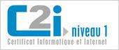 Ressources - Portail C2i | TICE, Web 2.0, logiciels libres | Scoop.it