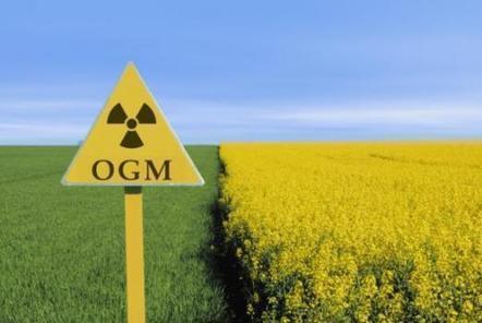 Les compagnies d'assurance refusent d'assurer les cultures d'OGM ... | Abeilles, intoxications et informations | Scoop.it