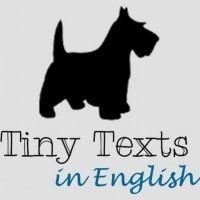 Tiny Texts | English topics | Scoop.it