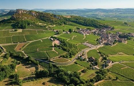 Le vignoble de Bourgogne et ses climats | Le vin quotidien | Scoop.it