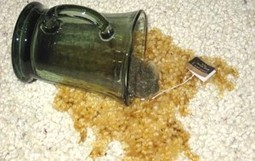Remove a Carpet Stain with Beer?!   Cool Stuff for the Home & Garden   Scoop.it