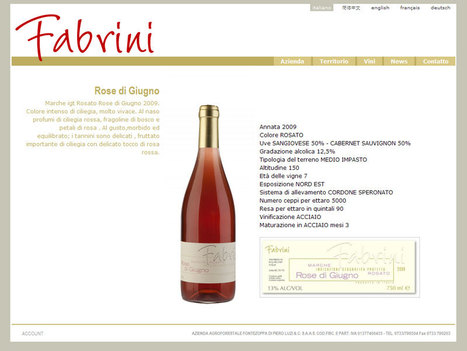 Le Marche Vineyards: Cantine Fabrini | Wines and People | Scoop.it