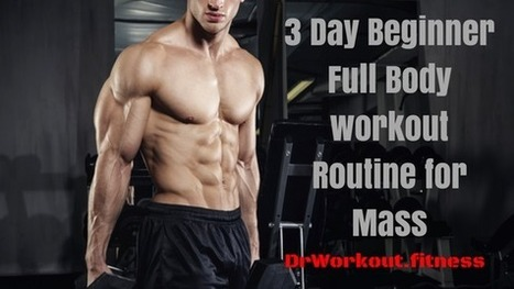 3 Day Beginner Full Body Workout Routine for Ma