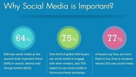 Réseaux sociaux et BtoB : récapitulatif 2013 en une infographie | TPE-PME - transition digitale | Scoop.it