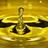 ITERG - Expertise Huiles et Produits dérivés