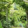 Independent Arborist