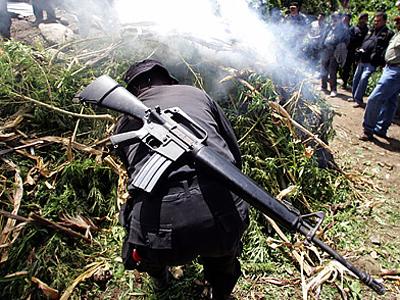 US laundered millions for drug cartels — RT | Philosophical Eye | Scoop.it