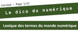 NetPublic » Dico du numérique : Plus de 100 mots et expressions du monde numérique | Vivre le numérique | Scoop.it