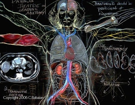 Blackboard anatomy art and the International Science & Engineering Visualization Challenge - Boing Boing | Data Visualization for Social Media | Scoop.it