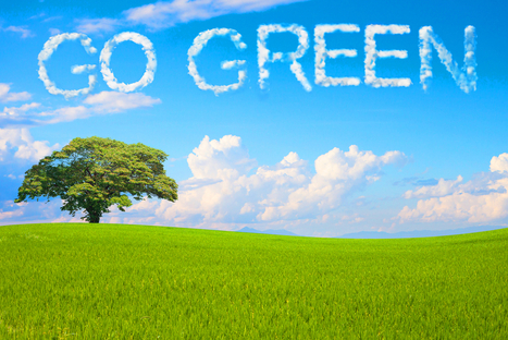 """Why """"Going Green"""" Is The Future For Your Business 