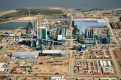 Uruguay tendrá una tercera planta de celulosa | MOVUS | Scoop.it