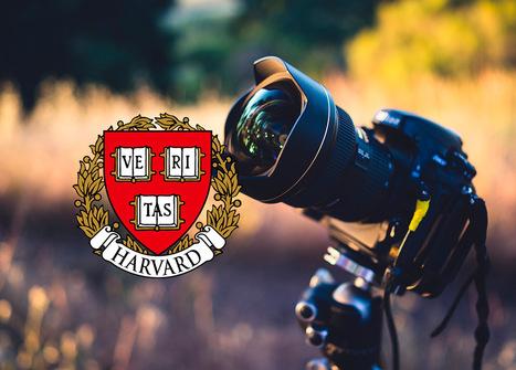 Apúntate al curso online de fotografía de Harvard totalmente gratis | Educacion, ecologia y TIC | Scoop.it