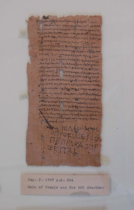 Sale of a Female Donkey for 600 drachmas<br/>A.D. 204 | Classical Geek | Scoop.it