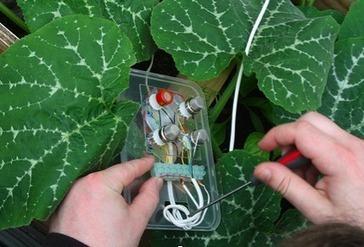 Doors of Perception weblog: Geeked-out gardening | Adaptive Design Capacity | Scoop.it