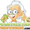Penny Auction Software