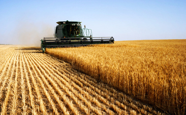 Farming Subsidies Designed To Make Your Health Suffer | Food issues | Scoop.it
