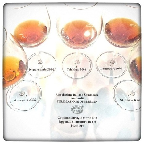 Sommeliers On the Commandaria Trail · Winecyprus | Wine Cyprus | Scoop.it