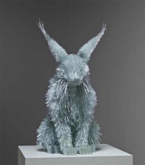 Shattered Glass Animals by Marta Klonowska | Diseño Web en Colombia, 3D SEO y Social Media | Scoop.it