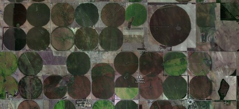 Squaring the Circle | Agriculture | Scoop.it