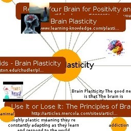 Brain Plasticity | Learn about Brain Plasticity on instaGrok, the research engine | Thinking, Learning, and Laughing | Scoop.it