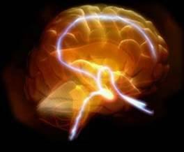 Recherches sur la conscience et le cerveau | Fonctionnement du cerveau & états de conscience avancés | Scoop.it
