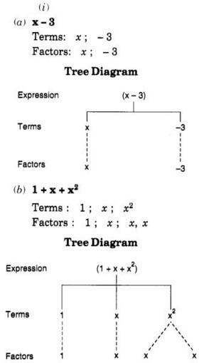 NCERT Solutions for Class 7 Maths Chapter 12 Al