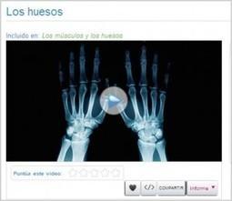 Revista Educación 3.0, tecnología y educación: recursos educativos para el aula digital » Más de mil videos de Ciencias con Santillana   Nesrin   Scoop.it