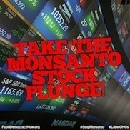 #Friends don't let Friends Invest in #Monsanto! #GMO #poison #socialmedia #health | Messenger for mother Earth | Scoop.it