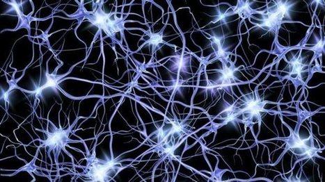 tovima.gr - Νευρώνες από κύτταρα δέρματος! | biosc&med | Scoop.it
