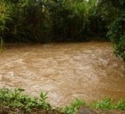 Alerte sanitaire  à Tahiti en raison du risque important de leptospirose | TAHITI Le Mag | Scoop.it