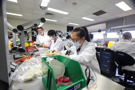 AEU : Private vocational training shonks exposed as TAFE faces more cuts | TAFE in Victoria | Scoop.it