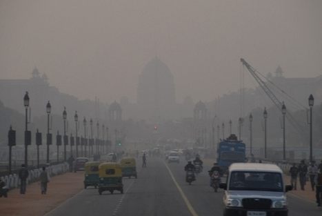 """India's Severe Ozone Pollution Kills Enough Crops to Feed 94 Million People (""""dirty air kills crops"""") 