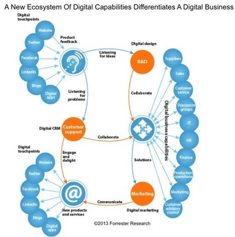Chief Digital Officer Fad Or Future Forreste
