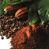 Tourisme responsable et cacao