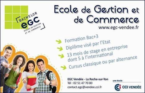 (1) EGC Vendée | HISTORIQUE Revue De Presse EGC VENDEE 2016 2018 |