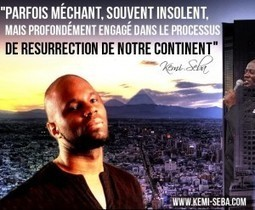 Pan-Africanism: Interview of the Afro Insolent Kemi Seba | African News Agency | Scoop.it