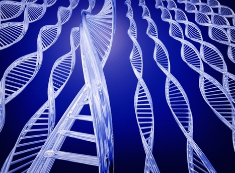 Genetic Manipulation Boosts Growth Of Brain Cells Linked To Learning, Enhances Antidepressants | Psychology and Brain News | Scoop.it