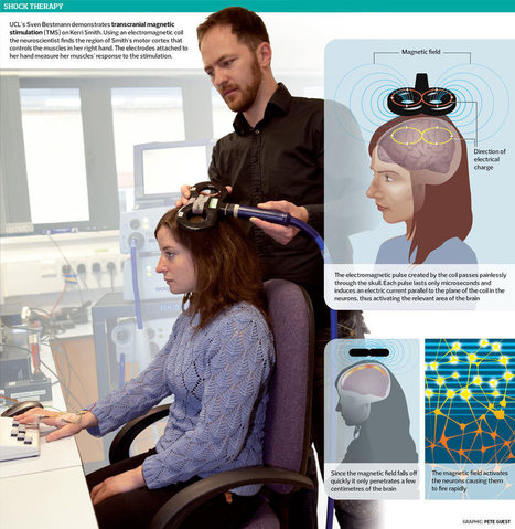 Electrical stimulation of the brain: the benefits of the short, sharp shock   Cognitive Science   Scoop.it