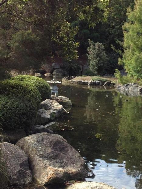 Twitter / NicBrogan: Great day at Japanese Gardens ... | Japanese Gardens | Scoop.it