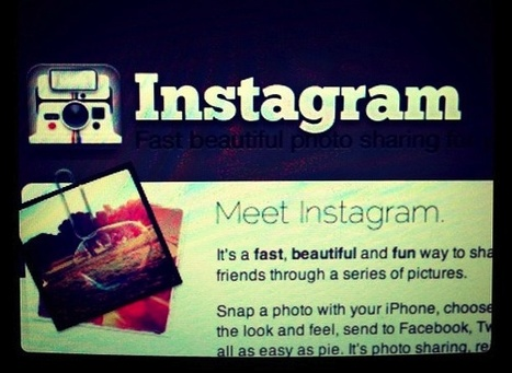 Instagram, un social network (anche) per il B2B   INFOGRAPHICS   Scoop.it