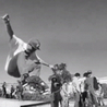 New Skateboard Videos