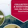Forêt, Bois, Milieux naturels : politique, législation et réglementation