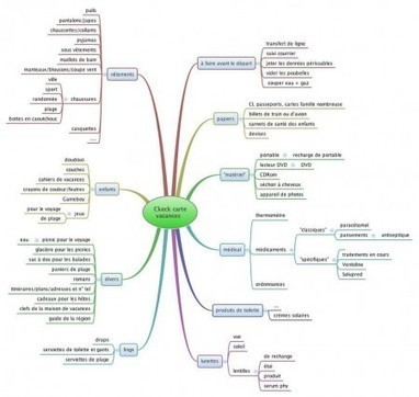 Mapping Experts | Facilitez-vous la vie avec une carte heuristique ! | Cartes mentales | Scoop.it