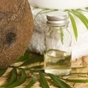 Let Food Be Your Cosmetic: Coconut Oil Outperforms Dangerous Petroleum Body Care Products | Bicol Coconuts | Scoop.it