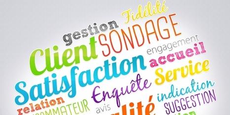 Comment réaliser une enquête de satisfaction client ?   Customer Experience, Satisfaction et Fidélité client   Scoop.it
