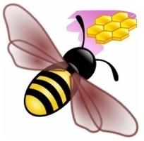 Freeplane 1.2 : le logiciel gratuit de mindmapping devient collaboratif ! | Cartes mentales | Scoop.it